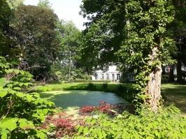 Allart verzicht tuin